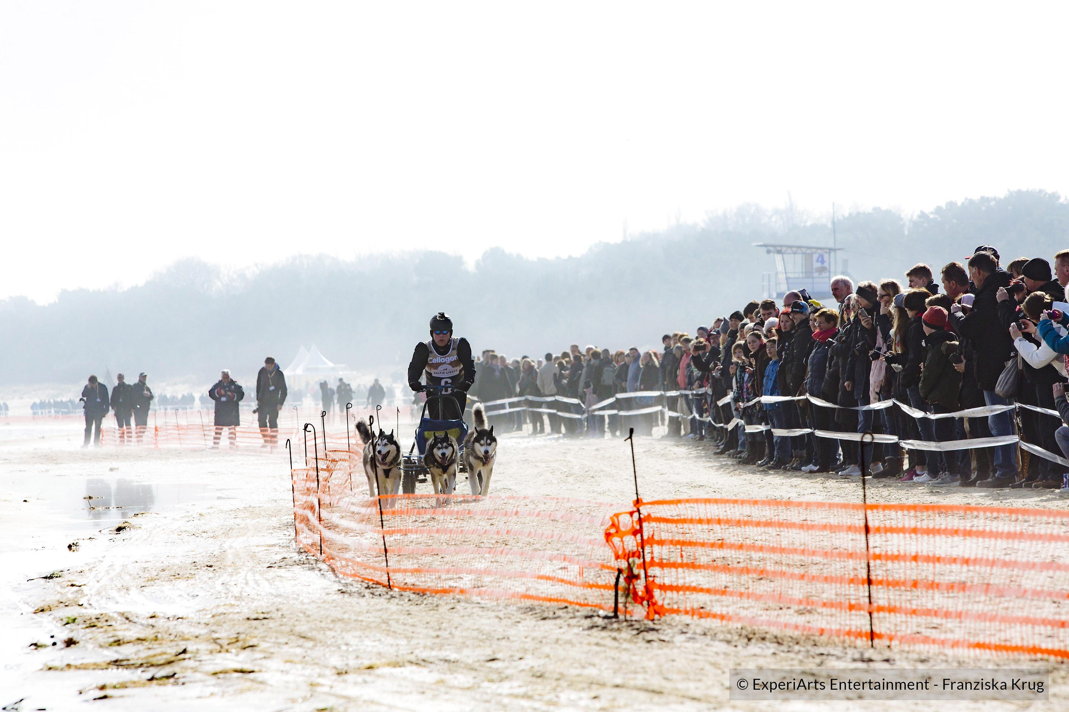 BALTIC LIGHTS – Das nördlichste Schlittenrennen Deutschlands